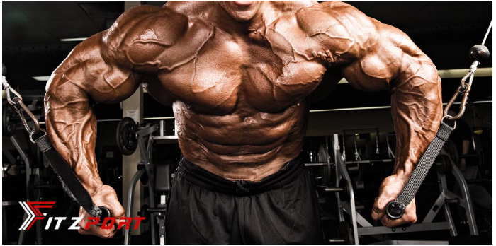 The Best 10 Chest Workouts for Men