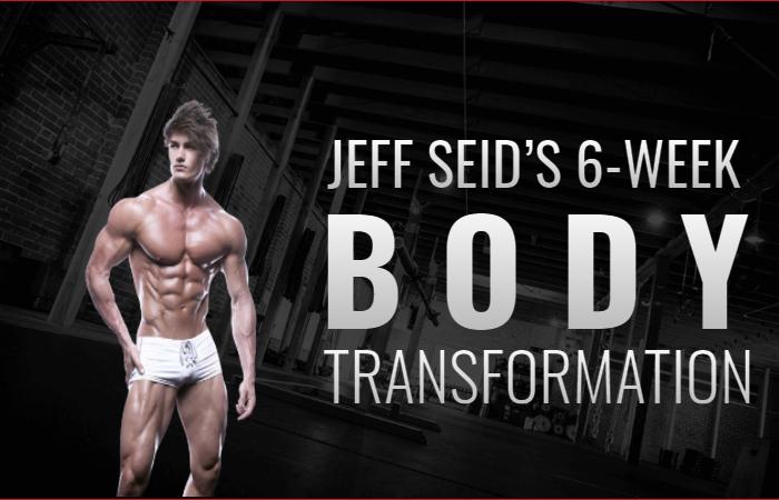 Jeff Seid's Body Transformation