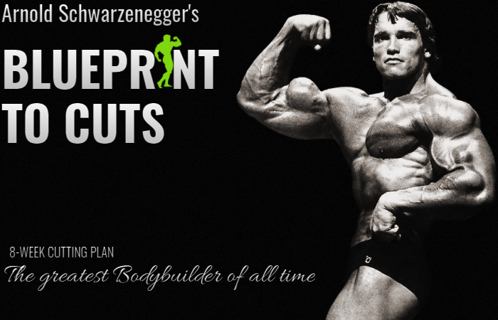 Arnold Schwarzenegger's Blueprint To Cuts