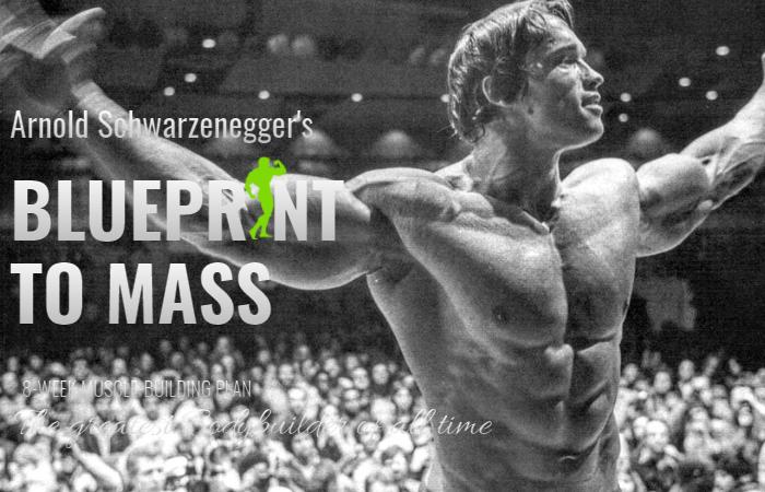Arnold Schwarzenegger's Blueprint To Mass